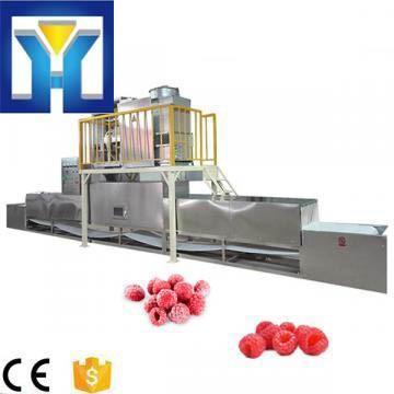 High Efficiency 25kw Microwave Frozen Fruit Thawing Machine