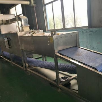 High efficiency hot sales Industrial tunnel microwave fish defrosting machine