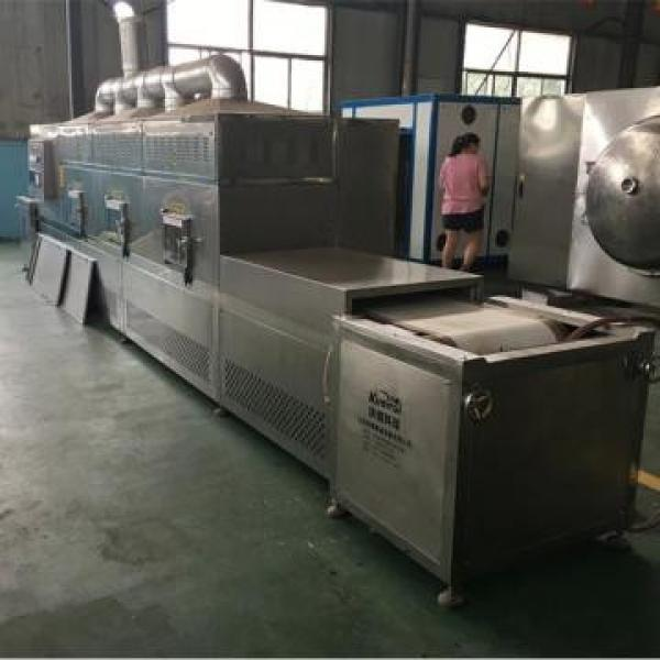 Low Price High quality all stainless steel poultry meat microwave thawing machine #2 image