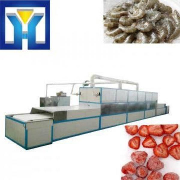 Full Automatic Ozone Industrial Meat Thawing Machine #1 image