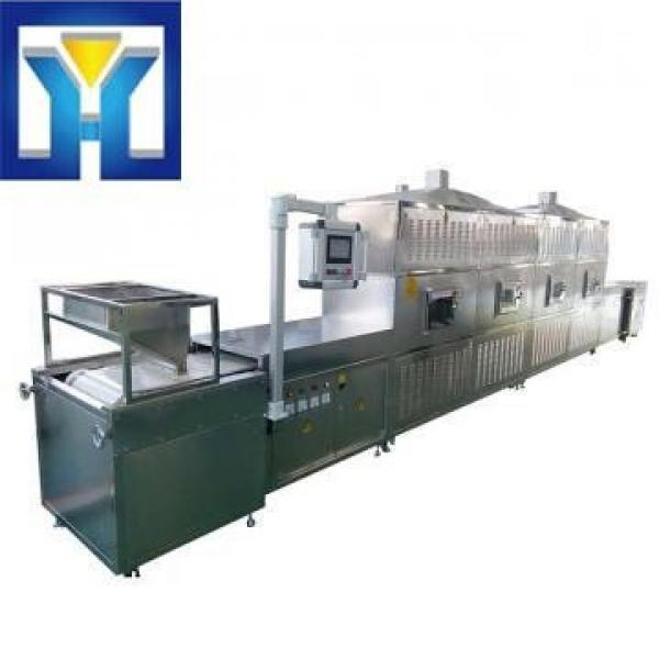 Microwave Thawing Machine for Chilled Meat and Frozen Seafood #1 image